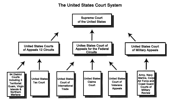 Judicial Branch Court Structure further New York State Court System Structure as well Georgia State Court System Structure likewise United States Federal Court System also Levels Of Federal Judicial System In The Court. on u s court system diagram